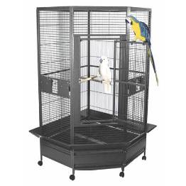 large flight cage